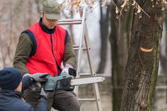 Man leaning how to cut a branch with chainsaw in the yard. Young men leaning how to cut a branch with chainsaw in the yard Stock Photography
