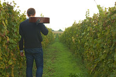 Man leave with guitar. Young man leave in vineyard with guitar royalty free stock image