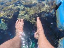 Man legs in sea water. Resorts at Sharm El Shiekh , Red Sea  Egypt Royalty Free Stock Photos