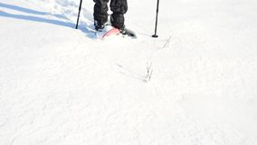Man legs with snowshoes walk in snow. Detail of winter hike in snowdrift, snowshoeing with trekking poles and shoe cover in powder