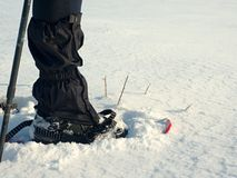Man legs with snowshoes walk in snow. Detail of winter hike in snowdrift Stock Photography