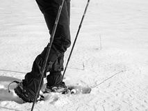 Man legs with snowshoes walk in snow. Detail of winter hike in snowdrift, snowshoeing Royalty Free Stock Photos