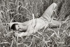 A man lie in field of wheat Stock Image