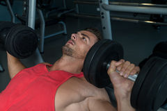 Man Lies On A Bench And Does Dumbbell Presses Stock Photography