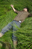 A man lies down in the thick patch of grass   Royalty Free Stock Photo