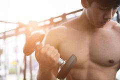 Man lift dumbbell in gym. bodybuilder male working out in fitnes Royalty Free Stock Image