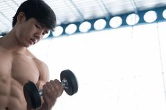 Man lift dumbbell in gym. bodybuilder male working out in fitness center. sport guy doing exercises in health club. Young man lift dumbbell in gym. bodybuilder Stock Photo