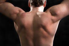 Man lifting dumbbells. Royalty Free Stock Images