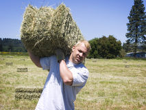 Man lifting hay bale royalty free stock photo