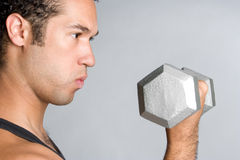 Man Lifting Weights Royalty Free Stock Image