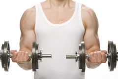 Man lifting weights. Doing double bicep curls straight on to camera Royalty Free Stock Images