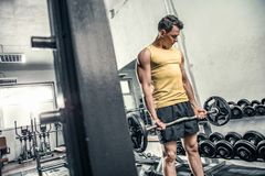 Man lifts curl barbell. At the gym Royalty Free Stock Photos