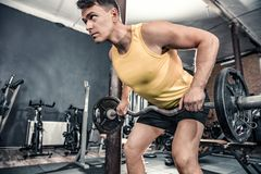 Man lifts curl barbell. At the gym Royalty Free Stock Images