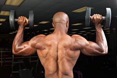 Man Lifts Dumbells Stock Images