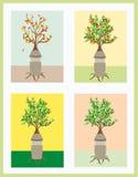 A man like a tree. Stock Photos