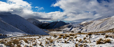 Man on Lindis Pass Stock Images