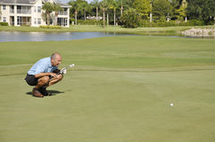 Man lining up shot on golf course royalty free stock photography