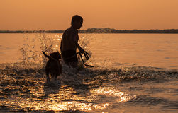Man with little beagle puppy fooling around in ocean sunset wave Royalty Free Stock Photo