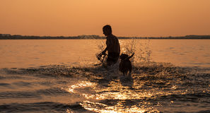 Man with little beagle puppy fooling around in ocean sunset wave Stock Images