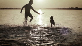 Man With Little Beagle Puppy Fooling Around In Ocean Sunset Waves stock footage