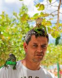 Man with lizards on head and shoulder. stock photography