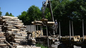 Man load log transport. Man loading felled tree logs with timber crane to heavy truck trailer for transportation circa June 2013 in Moletai, Lithuania stock video