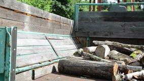 Man load log wood trailer. Lumberjack worker man load tree logs for firewood in tractor trailer stock footage
