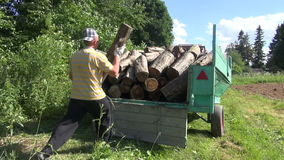Man load log wood trailer. Lumberman farmer worker man load tree logs for firewood in tractor trailer and close it stock video footage