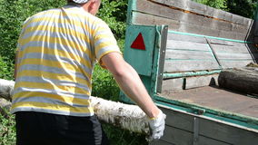 Man load log wood trailer. Lumberman worker man load tree logs for firewood in tractor trailer stock video footage
