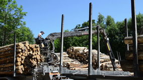 Man load trailer wood log