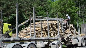 Man load trailer wood log. Man with special crane equipment load truck trailer with wood logs near forest  circa June 2013 in Moletai, Lithuania. Forest fell stock video