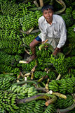 Man loading bananas - Rangamati Stock Images