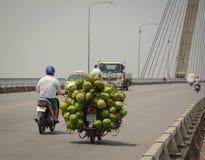A man loading coconut on Binh bridge Stock Images
