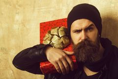 Man with long beard. royalty free stock images