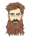 A man with a long beard and earring. Vector portrait illustration, isolated on white. A man with a long beard and earring. Vector portrait illustration Royalty Free Stock Photo