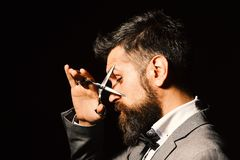 Man with long beard holds steel scissors near eyes. Business and barbershop service concept. Businessman with tricky royalty free stock photo