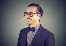 Man with long nose isolated on gray background. Liar concept. royalty free stock images