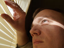 Man looking through blinds Stock Image