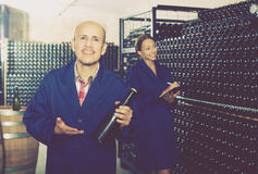 Man looking at bottle of sparkling wine. Happy mature male winery worker standing with bottle in hands in storage cellar Royalty Free Stock Photography