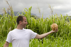 Man looking at a coconut Stock Image