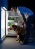 Man looking into fridge royalty free stock image