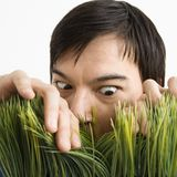 Man looking through grass. Stock Photos