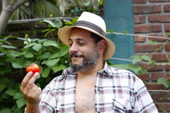 Man looking at his tomato Royalty Free Stock Photography