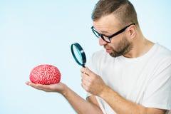 Man looking at human brain royalty free stock photography