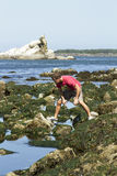 Man Looking In Tidal Pools In Tillamook Bay Royalty Free Stock Image