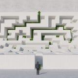 Man looking at labyrinth Royalty Free Stock Photos