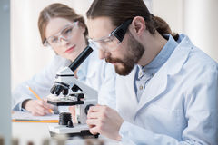 Man looking in microscope Royalty Free Stock Image