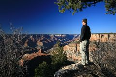 Man looking out Grand Canyon Stock Images