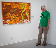 Man looking at the painting in gallery Danubiana, Bratislava Stock Photos