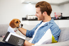 Man Looking At Paperwork And Playing With Pet Dog At Home Royalty Free Stock Image